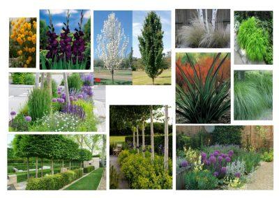 Garden Design Cambridge 15